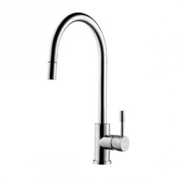 Franke Kitchen Faucet With Pull Out Shower and Swivel Spout